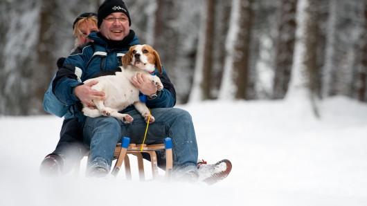 Ein Pärchen samt Hund im Arm rodelt in Braunlage auf einem Schlitten den Wurmberg herunter. (Archivbild)