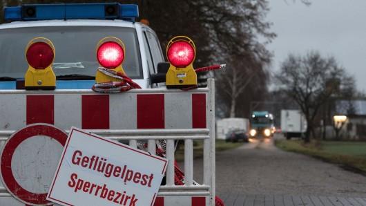 Nach dem Auftreten der Vogelpest hat die Polizei einen Maststall bei Dötlingen abgesperrt.