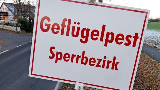 Im Landkreis Peine ist der nächste Fall von Geflügelpest nachgewiesen worden.