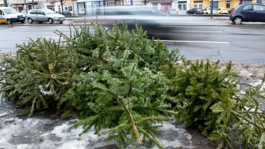 Weihnachtsbäume sollen nur an dafür vorgesehenen Plätzen abgelegt werden.