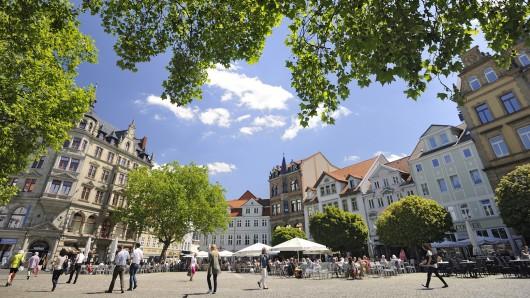 Der Braunschweiger Kohlmarkt wird im Juli und August wieder zum sommerstadtgarten.