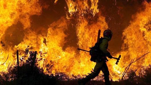 Ein Feuerwehrmann bekämpft die Flammen bei einem Waldbrand in Portugal (Archivbild).