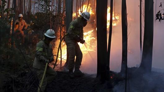 Feuerwehrleute der Republikanische Nationalgarde versuchen am 18. Juni in Avelar (Portugal) einen Waldbrand zu löschen.