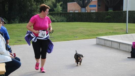 Mit Hund, zu Fuß, laufend - jeder kann mitmachen und Gutes tun. (Archivbild)