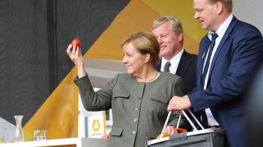 So fließend sind die Übergänge vom Bundestags- zum Landtagswahlkampf: Am Mittwoch war Kanzlerin Angela Merkel gemeinsam mit dem CDU-Landeschef Bernd Althusmann (hinter ihr) im Bundestagswahlkampf in Lingen unterwegs.