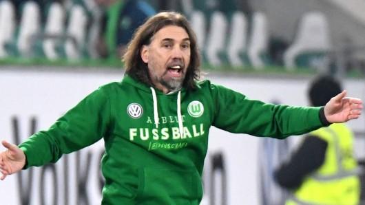 Alles im grünen Bereich: VfL-Coach Martin Schmidt, diesmal ganz in Grün.