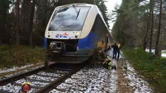 Der Baumstamm hatte sich so unglücklich im Fahrwerk des Triebwagens verkeilt, dass dieser nicht mehr aus eigener Kraft weiterfahren konnte.