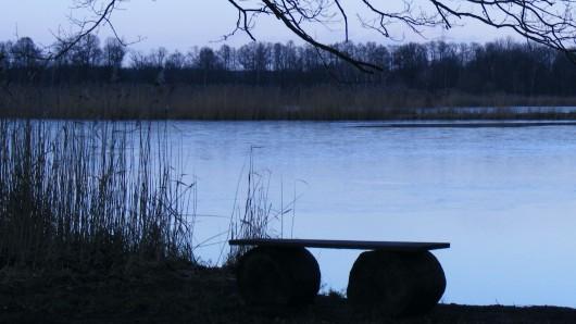 Kopfüber steckte der 86-Jährige im Teich - ein couragierter Zeuge rettete ihn (Symbolbild).
