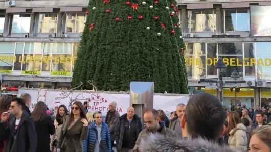 83.000 Euro soll der Baum gekostet haben.