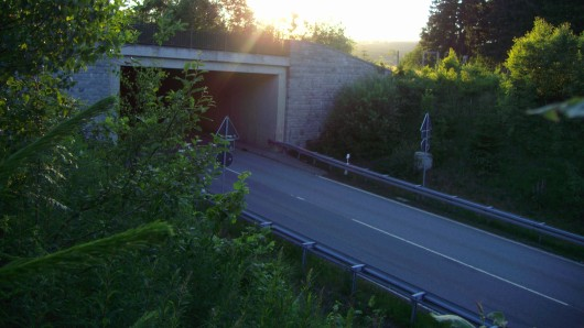 Der Tunnel wird für acht Monate vollständig gesperrt (Archivbild).