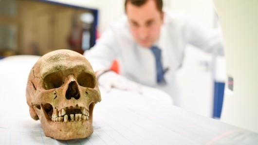 Kinder haben auf einer Pferdekoppel bei Barleben einen menschlichen Schädel gefunden. Rechtsmediziner sollen ihn nun analysieren (Symbolbild).