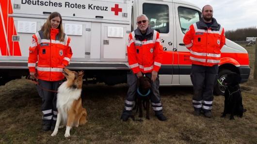 Diese drei Fellnasen haben die Eignungsprüfung bestanden und werden jetzt zu Suchhunden ausgebildet.