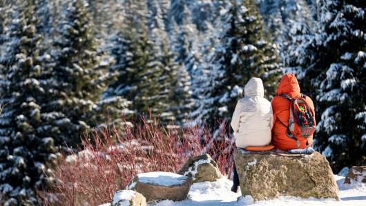 Der Naturpark Harz ist der einzige deutsche Anwärter (Symbolbild).