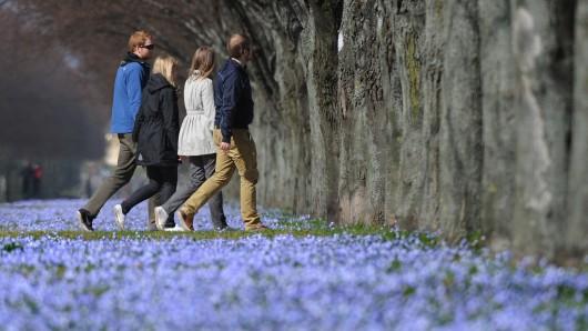 Der Frühling macht Halt in der Region. (Archivbild)