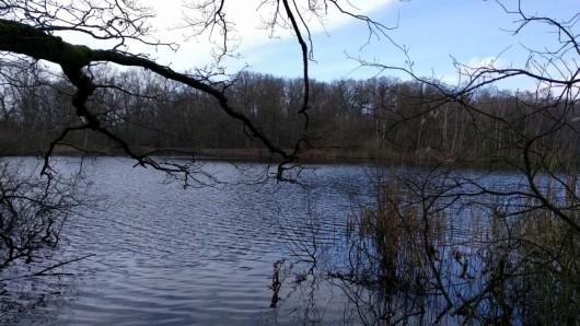 Die Leiche wurde am Samstag gegen 8.30 am Alten Teich gefunden.