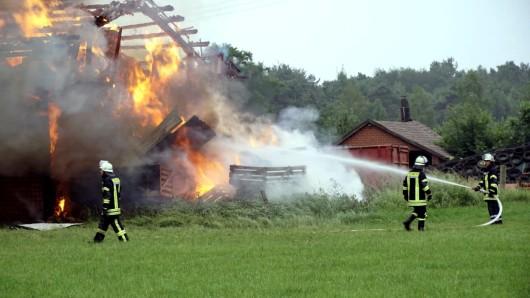 Elf Tiere fanden in dem brennenden Stallgebäude den Tod.