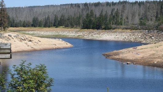 Letzte Wasserreserven im Oderteich - am Freitag soll er leer sein. (Archivbild)