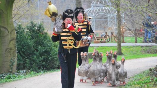 Die niederländische Gänsekappelle mit ihren Tambourmajors kommen aufs Schloss Wolfsburg.