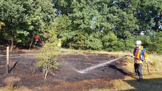 Nicht zu retten: Rund 600 Quadratmeter Wald und Wiese sind am Abend bei Ettenbüttel verbrannt.