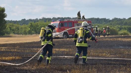 Bei der anhaltenden Trockenheit hatten die Flammen auf dem abgeernteten Feld leichtes Spiel.