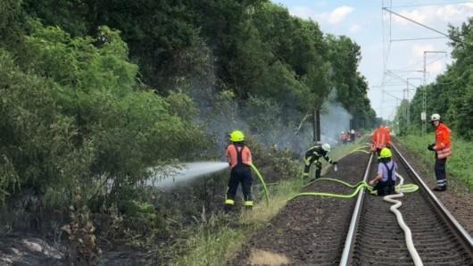 Mehrere Böschungsbrände behindern den Zugverkehr rund um Braunschweig (Symbolbild).
