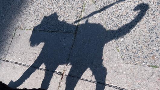 Die 81-Jährige wurde von einem Hund gebissen. (Symbolbild)