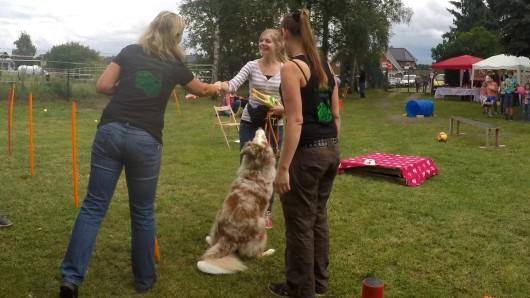 Mit einem Hundewettbewerb und einem bunten Rahmenprogramm feiert der Tierschutzverein im August ein Sommerfest.
