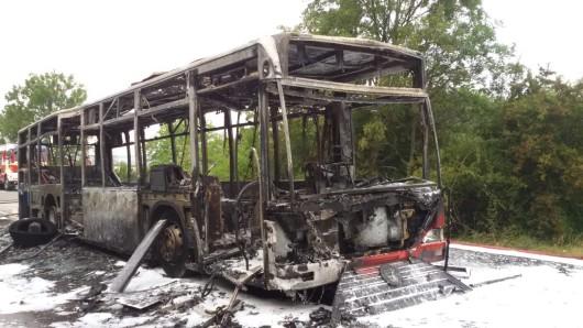 Der Bus ist auf der L239 komplett ausgebrannt - nur doch das Skelett ist übrig.
