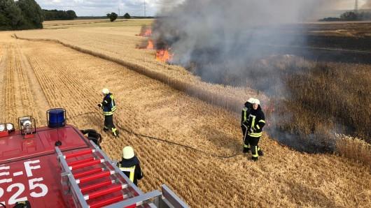Durch ein sieben Hektar großes Getreidefeld fraßen sich die Flammen.