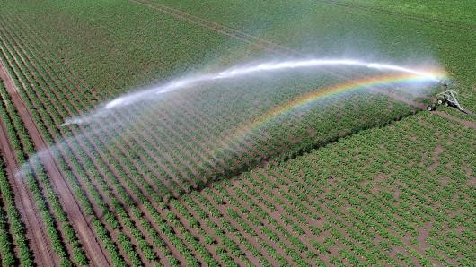 Aufgrund der Trockenheit müssen Landwirte in Helmstedt, Peine, Gifhorn und Wolfsburg mit Bewässerungsanlagen nachhelfen.