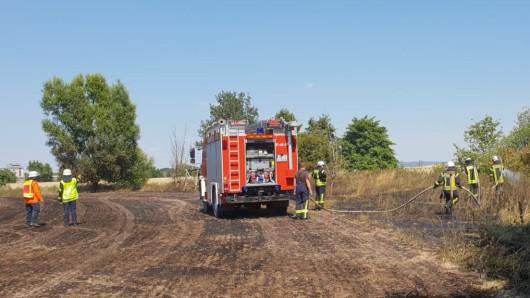 Zwischen Linden und Klein Denkte ist ein Feld am Donnerstag in Flammen aufgegangen. Die Feuerwehr Linden löschte mit rund 6.500 Litern Wasser.