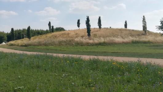 Die Wehranlage stammt aus dem 14. Jahrhundert - und war bislang nur noch mit einigen Resten im Boden existent.