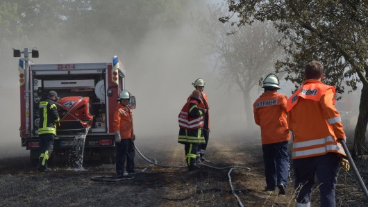 Nur wenige Meter vor einem Waldstück konnten die Löschkräfte das Feuer stoppen.