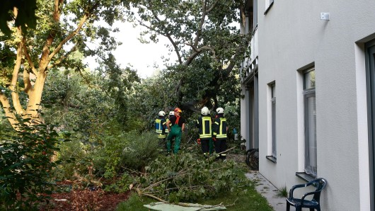 Die Berufsfeuerwehr Wolfsburg und die Freiwillige Feuerwehr Vorsfelde waren im Einsatz.