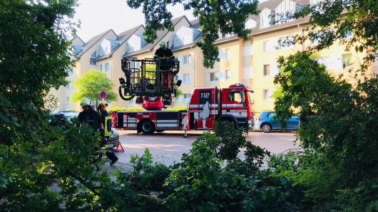 Die Berufsfeuerwehr Wolfsburg hat den Vorsfelder Kameraden mit ihrer Drehleiter ausgeholfen.
