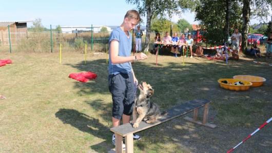 Der Tierschutzverein Gifhorn feiert im Tierheim Ribbesbüttel sein Sommerfest. Hund und Herrchen dürfen da natürlich nicht fehlen. (Archivbild)