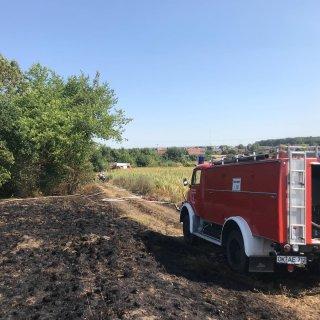 Die Feuerwehr Grasleben wurde als Unterstützung angefordert.