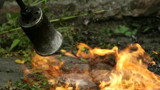 Ein Peiner wollte Unkraut abflammen - und fackelte dabei seine Garage an. (Symbolbild)