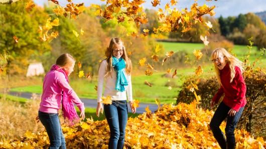 Kinder und Jugendliche aus Salzgitter können im Herbst die Stadt neu kennenlernen (Symbolbild).
