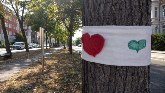 Baumschützer haben an einigen der vom Fällen bedrohten Gehölze rote und grüne Herzen angebracht.