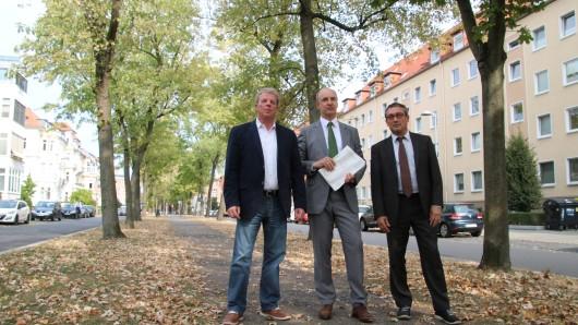Michael Loose, Leiter des Fachbereichs Stadtgrün und Sport, Erster Stadtrat Christian Geiger und Klaus Hornung, Leiter des Referats Stadtbild und Denkmalpflege, überlegen nach Analyse des Baumbestands, wie es mit der Jasperallee sinnvoll weitergehen kann.