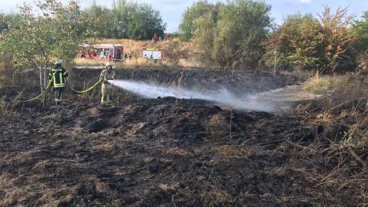 Etwa 1.500 Quadratmeter Grasland sind am späten Samstagsabend am Lappwaldsee in Flammen aufgegangen.