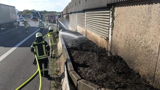 Am Dienstagnachmittag ist an der A2 bei Helmstedt-West der Seitenstreifen auf einer Länge von 50 Metern in Brand geraten. Die Ursache ist noch unklar.