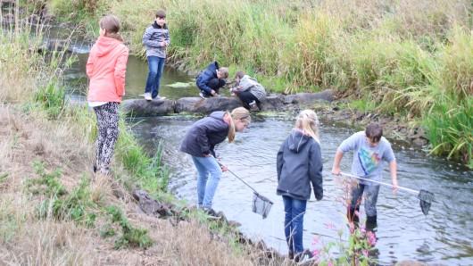 Kinder aus der Grundschule Flechtorf entnehmen Proben aus der Schunter.