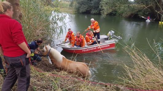 Die Feuerwehr musste sich einiges einfallen lassen um das Pferd aus der Oker zu retten.