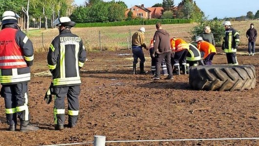 Die Einsatzkräfte der Freiwilligen Feuerwehr Nöpke konnten das eingeklemmte Pony zwar noch befreien. Wegen zu großer Erschöpfung musste das Tier aber eingeschläfert werden.
