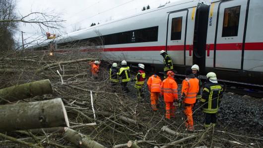 Lamspringe: Bäume und Äste liegen auf der ICE-Trasse zwischen Hannover und Göttingen an einem ICE der Deutschen Bahn. Angesichts der Vielzahl sturmbedingter Zugausfälle will die niedersächsische Landesregierung die Zusammenarbeit von Deutscher Bahn und Naturschutz- beziehungsweise Waldbehörden verstärken.
