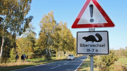 Ein ungewöhnliches Verkehrsschild mahnt die Verkehrsteilnehmer auf Biber zu achten. In der Straßenverkehrsordnung sind solche Schilder mit der Silhouette eines Bibers nicht vorgesehen, doch die Stadt Winsen an der Luhe hat die Aufstellung des Schildes genehmigt.