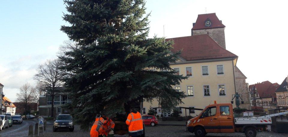 Der alte Weihnachtsbaum war am Wochenende umgekippt.