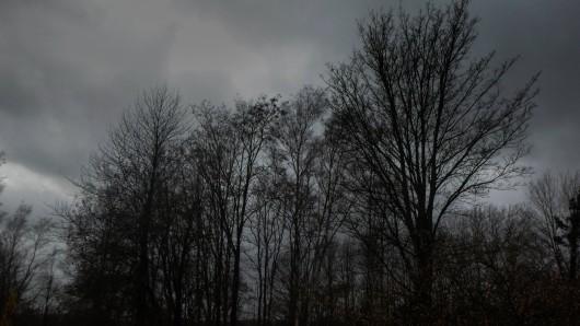 Sturmtief Franz ist im Anmarsch. (Symbolbild)